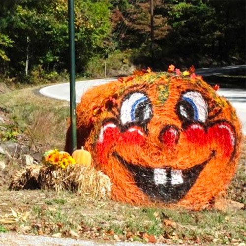 Upcoming Events At The Walters Farm Pumpkin Patch And Corn Maze