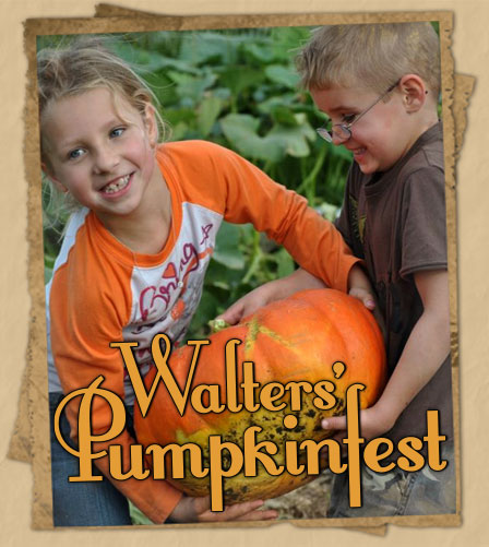 Head out into our pumpkin patch for a fall fun u-pick pumpkin adventure!